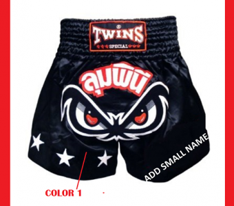 CUSTOM MUAY THAI SHORTS NO FEAR BY TWINS SPECIAL MODEL 2