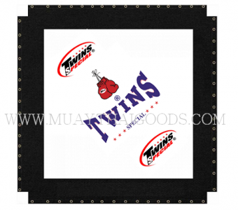 CANVAS TW2 TWINS SPECIAL FOR BOXING MUAY THAI KICK BOXING RING