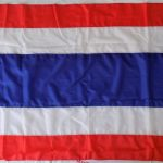 THAI THAILAND FLAG SIAM MUAY THAI GLOVES